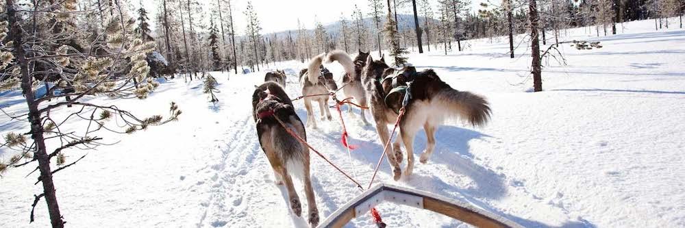 kakslauttanen-arctic-resort-3-extreme-guest-experiences.jpg