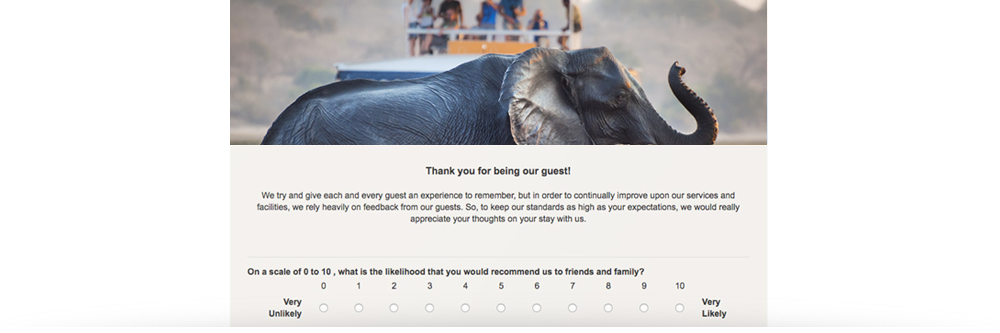 questionnaire-example-tour-operator.png