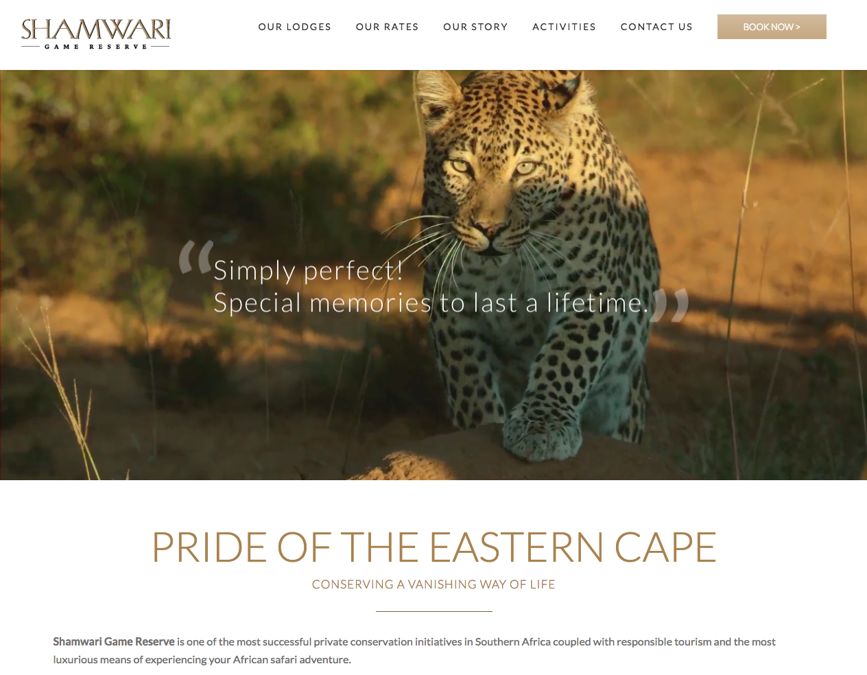 shamwari_website.png