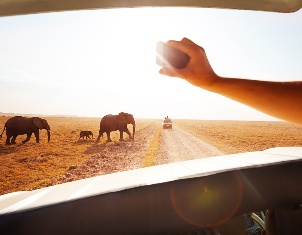 Trend Digest: Top trends for tour operators